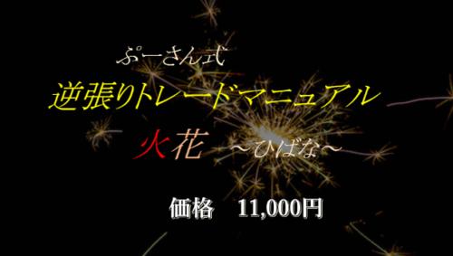 ぷーさん式逆張りトレードマニュアル 火花〜ひばな〜